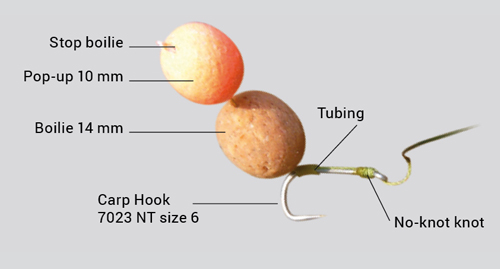 Snowman Carp Rig: Rigging suggestion for long straight-shank hooks